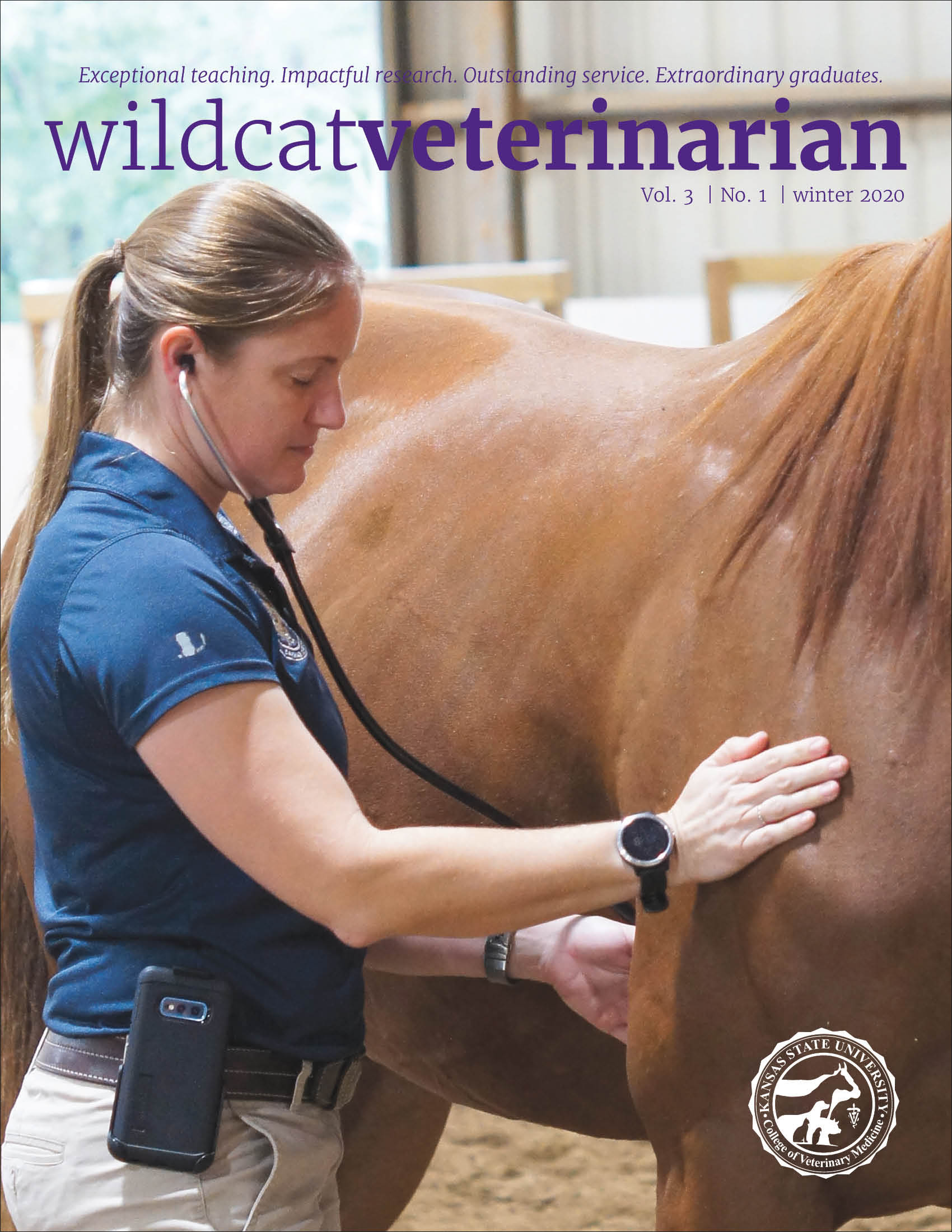 Wildcat Veterinarian
